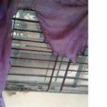 সাবেক শিবির নেতা মামুনের বাসায় সন্ত্রাসীদের আগুন
