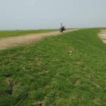 সুনামগঞ্জে কৃষকদের হতাশ না হওয়ার আশ্বাস